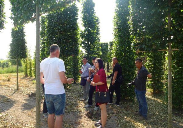 bezoek-chinese-boomkwekers